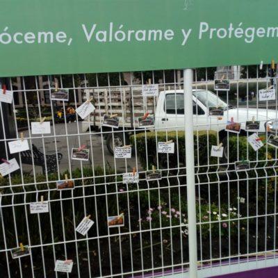 PlazaDeLosMártires-21Ago